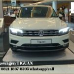 Gallery Sales Marketing Mobil Dealer VW Arlan (2)